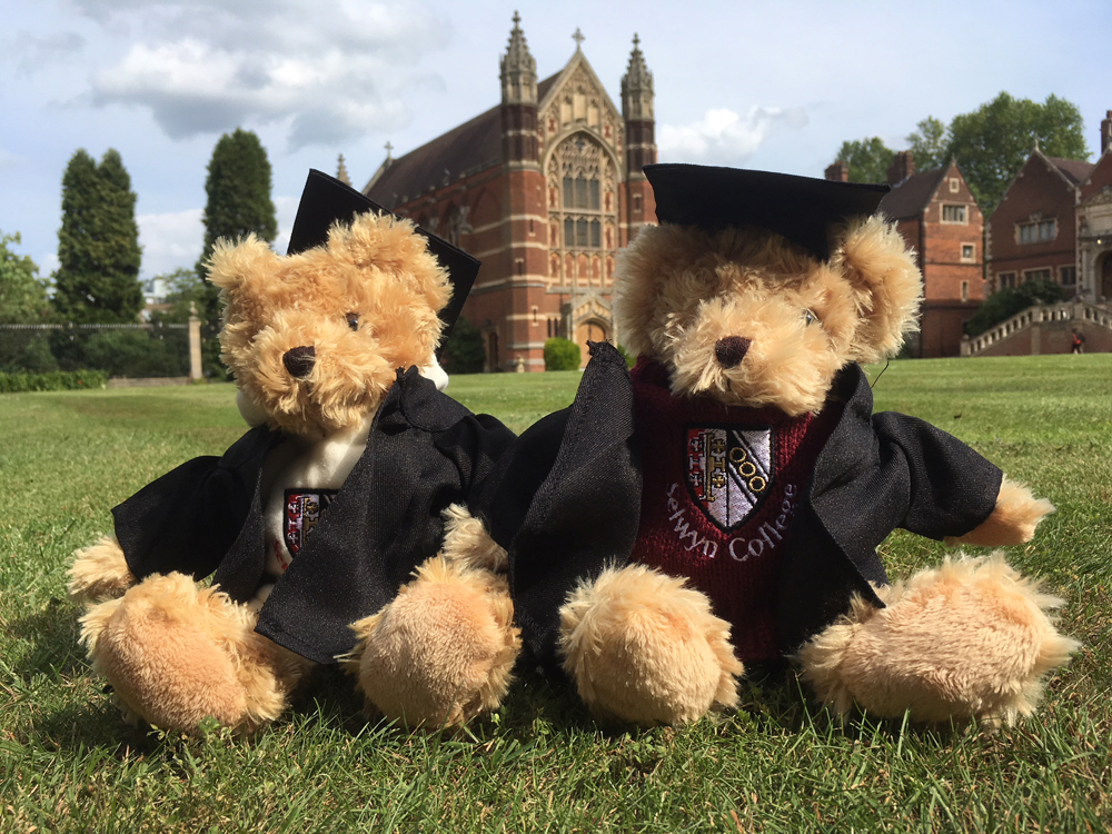 Graduation teddies (L2)
