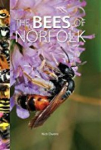 Bees of Norfolk